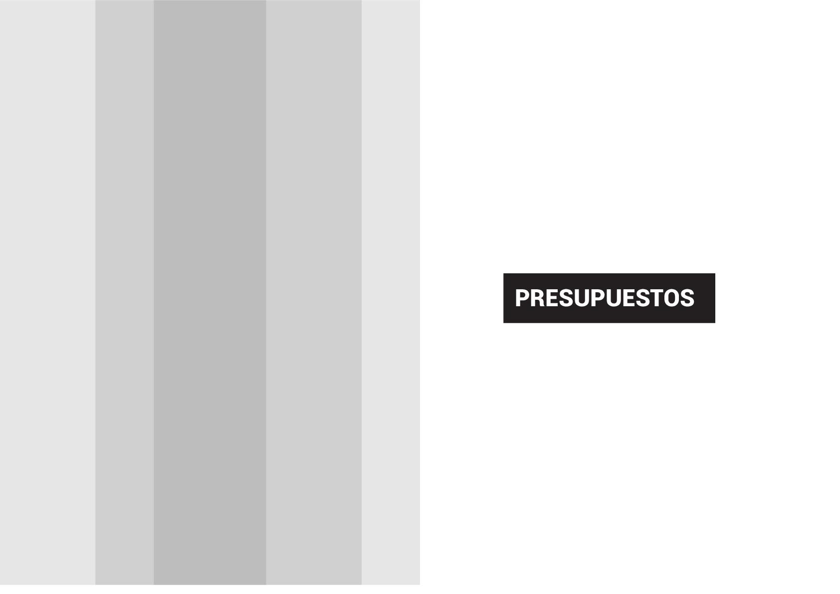 IVAJ-GRAFICO-PRESUPUESTO-019